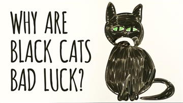 Why Are Black Cats Considered BAD LUCK?